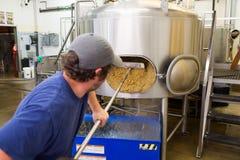 Comercialmente fabricação de cerveja IPA em Oakshire Fotografia de Stock Royalty Free