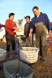 Comerciante da pesca Imagem de Stock