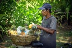 Comerciante de la piña en Sri Lanka imagenes de archivo