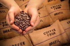 Comercio con los granos de café Foto de archivo libre de regalías