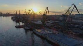 Comercio internacional, litera comercial con las grúas de elevación para cargar y descarga del buque del comercio internacional e almacen de metraje de vídeo