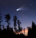A comet in the evening sky. A bright comet is flying in the starry evening sky Stock Photography