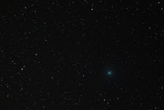 Comet 41P Crossing Ursa Major Constellation in 2017 Royalty Free Stock Photos