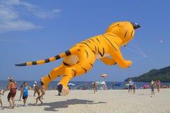 Cometa amarilla divertida del gato en la playa Imagen de archivo