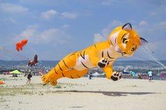 Cometa amarilla divertida del gato en la playa Foto de archivo
