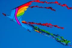 Cometa colorida del pájaro Fotos de archivo libres de regalías