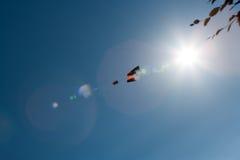 Cometa con el cielo azul Imágenes de archivo libres de regalías