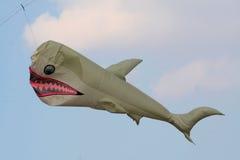Cometa del tiburón Imágenes de archivo libres de regalías