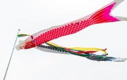 Cometa japonesa de los pescados de la carpa de Koinobori para el día de fiesta del muchacho Fotos de archivo