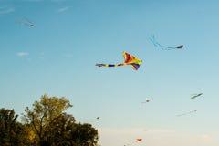 Cometas coloridas Imagen de archivo libre de regalías