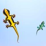 Cometas del reptil en el cielo imagen de archivo