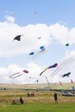 Cometas múltiples que son voladas en el cielo fotos de archivo libres de regalías