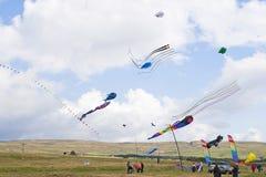 Cometas múltiples que vuelan arriba en el campo Foto de archivo libre de regalías