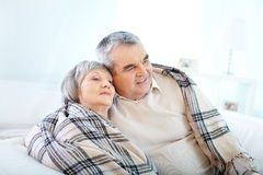Comfort at home Royalty Free Stock Images