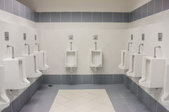 Comfort Toilet Urinals Stock Image