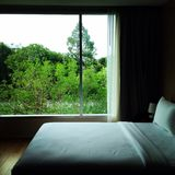 Comfort zone. Nice and comfort bed with green view in big window Stock Photography