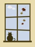 Comfortabel Oktober Stock Foto's