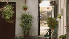 Comfortabel stil terras met veel ingemaakte installaties en bloemen, huisontwerp, buitenkant stock videobeelden