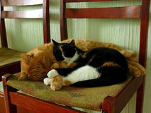 Comfortabele huisluiheid Stock Afbeelding