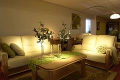 Comfortabele moderne woonkamer royalty-vrije stock afbeeldingen