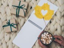 Comfortabele samenstelling, hete chocolade met heemst, merinoswol algemene, warme en comfortabele atmosfeer Brei achtergrond Vlak stock fotografie
