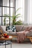 Comfortabele Skandinavische sofa met gevormd hoofdkussen in helder woonkamerbinnenland royalty-vrije stock afbeelding