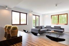 Comfortabele sofa binnenshuis stock foto