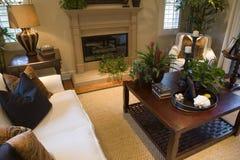 Comfortabele woonkamer met open haard. stock foto