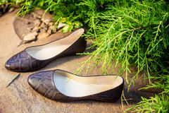 Comfortable ballet shoes, snakeskin, ladies shoes in nature. A Royalty Free Stock Photography