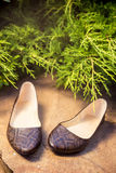 Comfortable ballet shoes, snakeskin, ladies shoes in nature Stock Photos