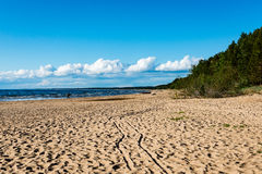Comfortable beach of the baltic sea with rocks and green vegetat Royalty Free Stock Images