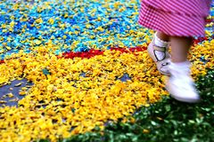 Comfortable carpet. A kid running on a carpet of petals Royalty Free Stock Images
