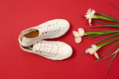 Comfortable casual female shoes and flowers. On color background Royalty Free Stock Photography