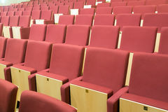 Comfortable chairs in modern audience hall Stock Image