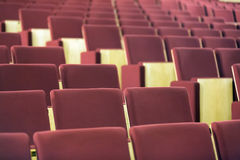 Comfortable chairs in modern audience hall Royalty Free Stock Photo