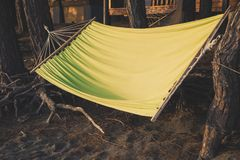 A comfortable hammock hangs between the trunks of pine trees near a country house in the forest.  Royalty Free Stock Images