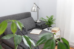 Comfortable place for reading in a living room. Decorated with plants Royalty Free Stock Image