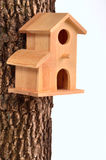 Comfortable starling-house on a tree trunk Stock Photos