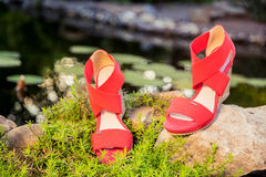 Comfortable summer sandals on nature. A Royalty Free Stock Image