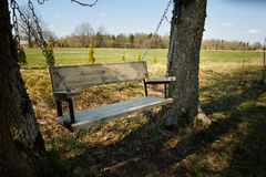 Comfortable swing bench between two trees. Comfortable swings between two trees in the shadow Royalty Free Stock Images