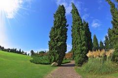 Comfortable walking path. Photo taken fisheye lens Royalty Free Stock Image