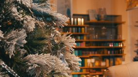 Comfortably decorated Christmas shop window, beautiful Christmas tree close-up. View stock video