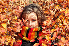 Comforter. Young pretty woman in the autumn park Stock Image