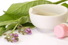 Comfrey Medicine Royalty Free Stock Images