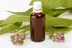 Comfrey Tincture Stock Photo