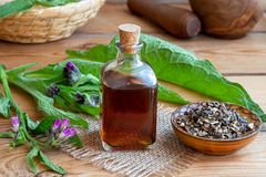 Comfrey tincture with comfrey root and fresh plant Stock Photo