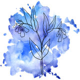 Comfrey at watercolor background Royalty Free Stock Photo