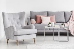 Free Comfy Armchair And Grey Sofa With Pink Pillows, And Coffee Table Stock Photo - 124262550