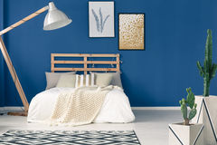 Blue walls and light bedding. Comfy bedroom with wooden frame, navy blue walls, light bedding Royalty Free Stock Photography