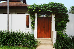 Comfy cottage with curly plant on walls Royalty Free Stock Photo